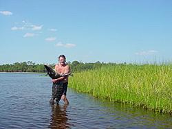 Man, Fl. Alligators are TOUGH!-gator%2520catch.jpg