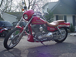 OT: 2001 Harley limited edition for sale-harely2.jpg