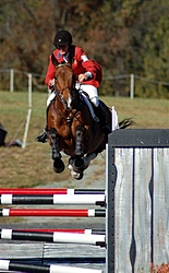 Christmas Came Early This Year-fhi-10-21-07-staium-jumping-061-medium-.jpg