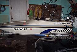 Cougar Cub-100_2271.jpg