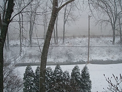 """OH NO!!! 8-10"""" of snow in the next 24 hours-p1010038.jpg"""