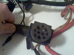 Main engine loom connector - where???-pigtail2.jpg