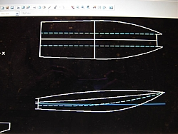 designing a cat-dsc00401.jpg