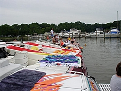 chesapeake bay area oso'ers-jellyfish-joels.jpg