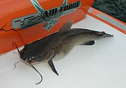 Has anyone fished off of their go fast?-laketrip063-033m.jpg