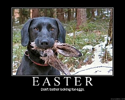 Happy Easter to all  OSO members.-easter-eggs.jpg