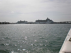 Pics & Movies of the Florida trip with the Tiger-ap2220113.jpg