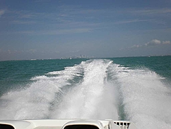 Pics & Movies of the Florida trip with the Tiger-ap2220117.jpg
