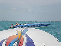 Pics & Movies of the Florida trip with the Tiger-ap2220157.jpg
