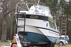 UGLY Boat Thread........-ugly-boat-002-large-.jpg