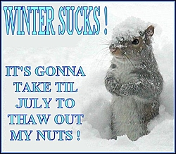 Enough Snow!!!!-att2216771.jpg