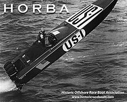 Don Aronow Memorial Race final countdown.-horba-flyer0001-small-.jpg