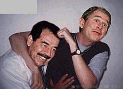 OT -- Catman finds Iraq's weapons-friends-1.jpg