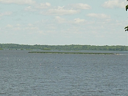 High Water-island2.jpg