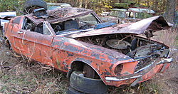 Any body see the little blue Sting Ray Friday-67-mustange-fastback-4spd-2-out-yard.jpg
