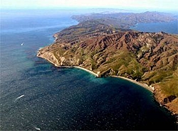 Over nighter to Santa Cruz Island July 5th...-highres_3689759.jpg