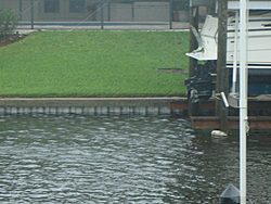 """Tropical Storm """"FAY"""" is leaving some water behind!-dsc02141.jpg"""