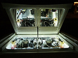 Whats the Difference ??  LED vs Neon in the Bilge-p1010128-large-.jpg