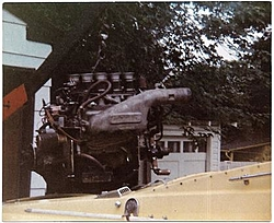 Need Help with a Magnum-Donzi in our back yard!-donzi-engine.jpg