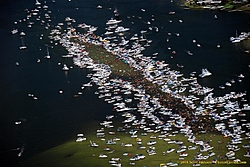 Rafted up! Show us how you do in on your water.-image001.jpg