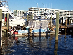 So you think you are a hard-core boater ?-100_1325.jpg