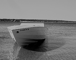 Let' See thoose Favorite Summer Pics....-texoma-excaliburs-nose-bw-large-.jpg