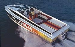 Wellcraft Cougar Cat - Pics wanted!-cougar_cat_1981_sm01.jpg