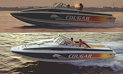 Wellcraft Cougar Cat - Pics wanted!-cougar_cat_1981_sm02.jpg