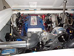 Engine Compartment Pics.  Lets see em.-boat-003.jpg