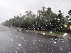 Past Hurricanes-gostav-028.jpg