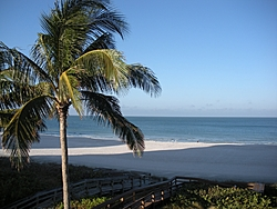 Looks like a good day to have lunch in Key West-dec-30-09-marco-key-west-001-%5B800x600%5D.jpg