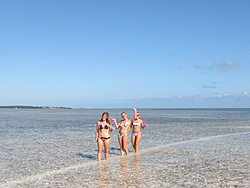 A few pic of News Year trip to Keys in Tiger-008.jpg
