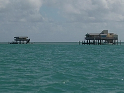 A few pic of News Year trip to Keys in Tiger-p1010737.jpg