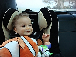 I would like to introduce my new first mate-dsc00254%5B1%5D.jpg