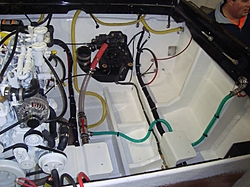 Engine Compartment Pics.  Lets see em.-dsc01917-%5B%5D.jpg