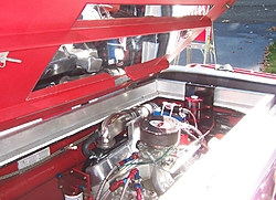 Engine Compartment Pics.  Lets see em.-motor1.jpg