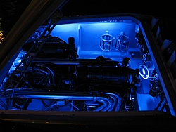 Engine Compartment Pics.  Lets see em.-night-kw-2r.jpg