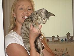 Update on Gina the miracle kitten!-gina-008.jpg