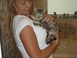 Update on Gina the miracle kitten!-gina-009.jpg