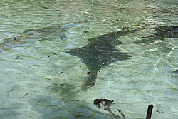 Bobthebuilder's next adventure - Part 1, Ft Lauderdale to Turks & Caicos-aimg_0751.jpg
