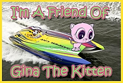 Gina the kitten update and A great cause!-friends-gina-2.jpg