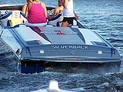 Lake Champlain Spring Fun Run - Saturday June 6th 2009-silverback.jpg