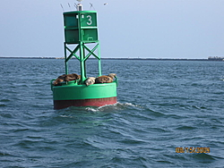 Out of Control testing in Long Beach Harbor-aug-test-burns-034.jpg