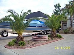 Height of a big V on a trailer-643-apelahama-034.jpg