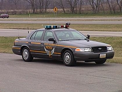 Troutly's new Police issued car-dsc00019.jpg