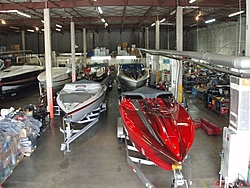 They're HERE, Sunsations at Doller Offshore!-p1110365.jpg