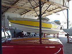 Sarasota, Long Boat Key Locals?-mvc-008s.jpg