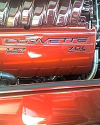 Corvette Cat - Destin, FL-z044_07.jpg