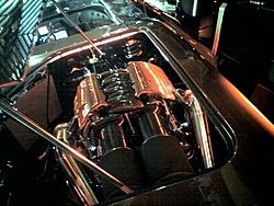 Corvette Cat - Destin, FL-z044_12.jpg
