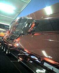 Corvette Cat - Destin, FL-z044_10.jpg